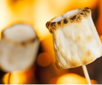 Marshmallows by the Campfire