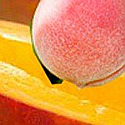 Peach Mango Fragrance Oil