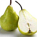 Fresh Picked Pear Fragrance Oil