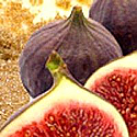 Brown Sugar & Figs Fragrance Oil